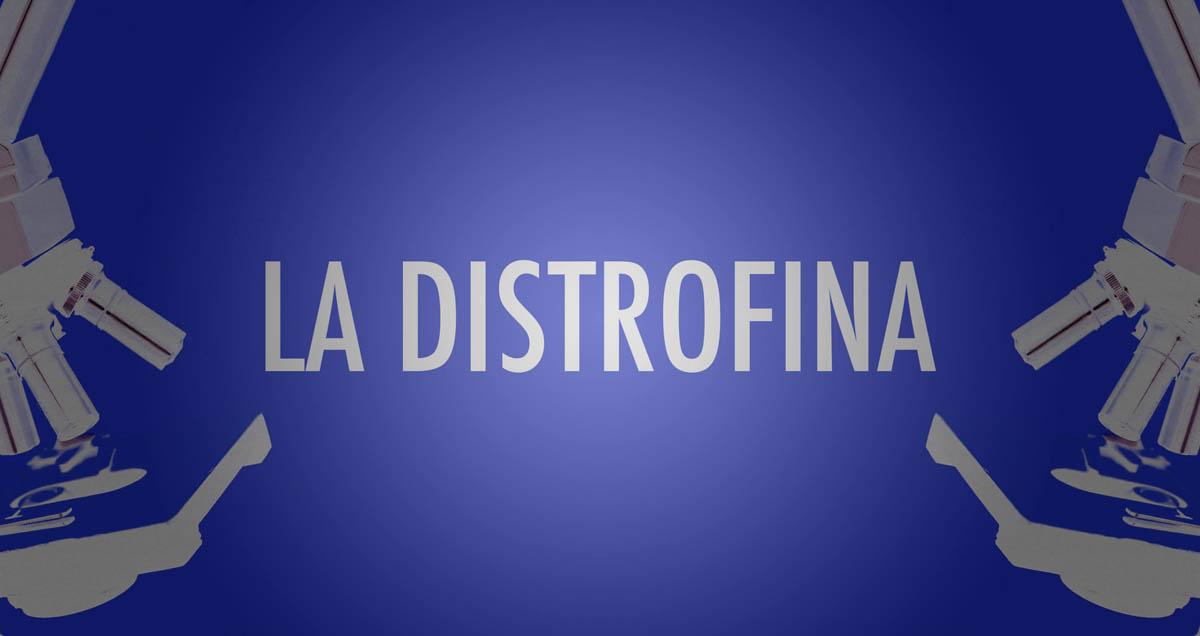 Distrofina