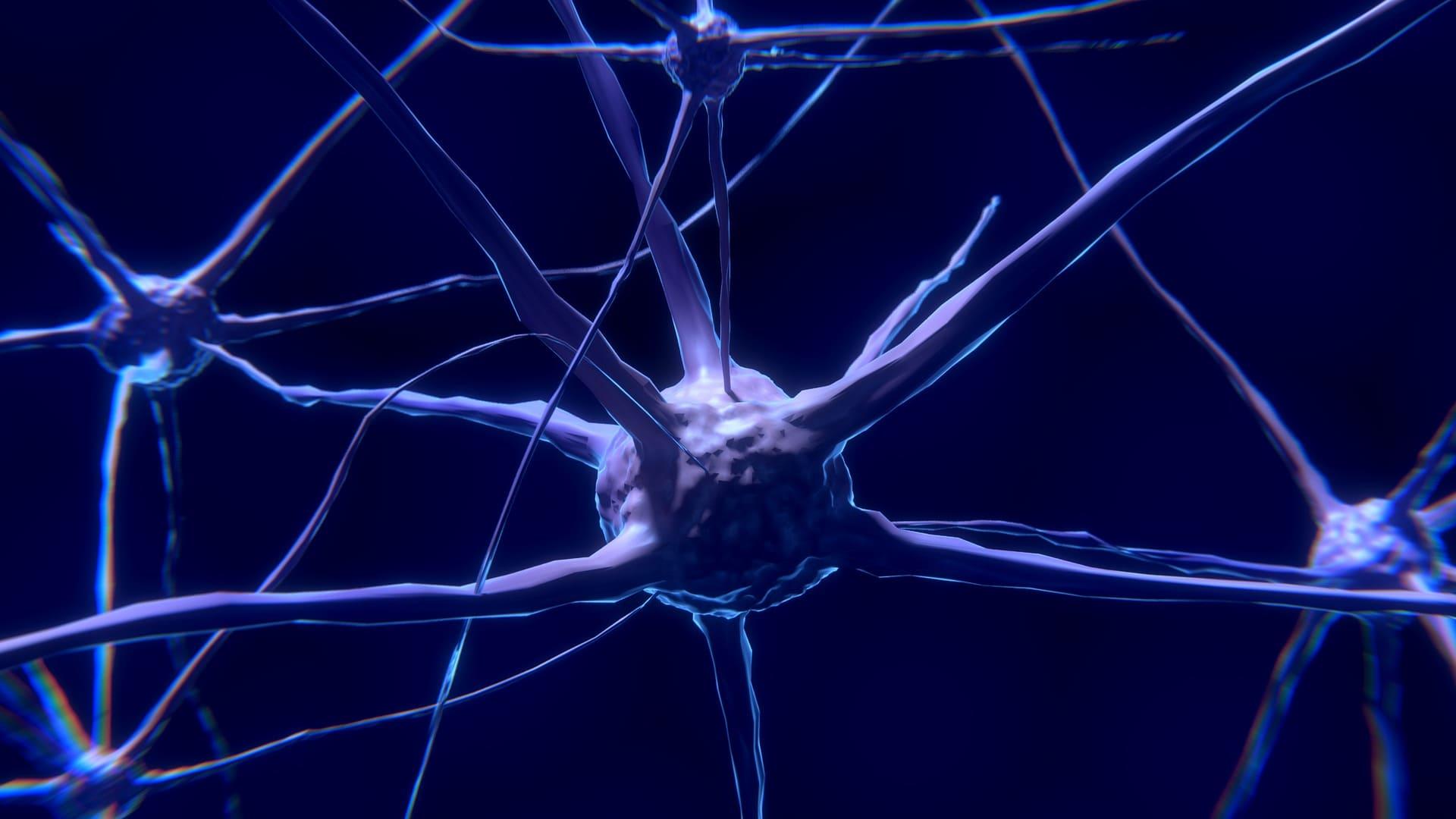 sintomi sclerosi multipla ability channel