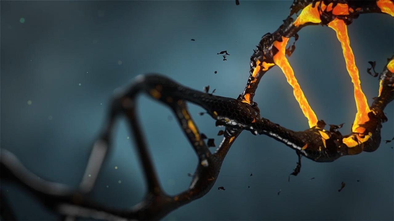 molecola killer-molecola killer SLA-SLA-Sclerosi Laterale Amiotrofica-prognosi SLA-prognosi Sclerosi Laterale Amiotrofica-Ability Channel-SLA ricerca