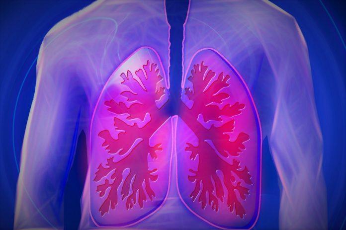 fibrosi cistica-fibrosi cistica sintomi-fibrosi cistica cause-fibrosi cistica cure-fibrosi cistica si muore-fibrosi cistica malattie rare-ability channel-fibrosi cistica portatore sano-fibrosi cistica test del sudore