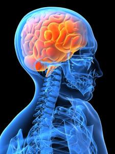 cerebroleso