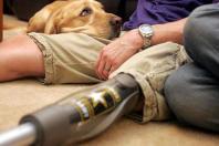 CuoriFelici, legame tra uomo e cane