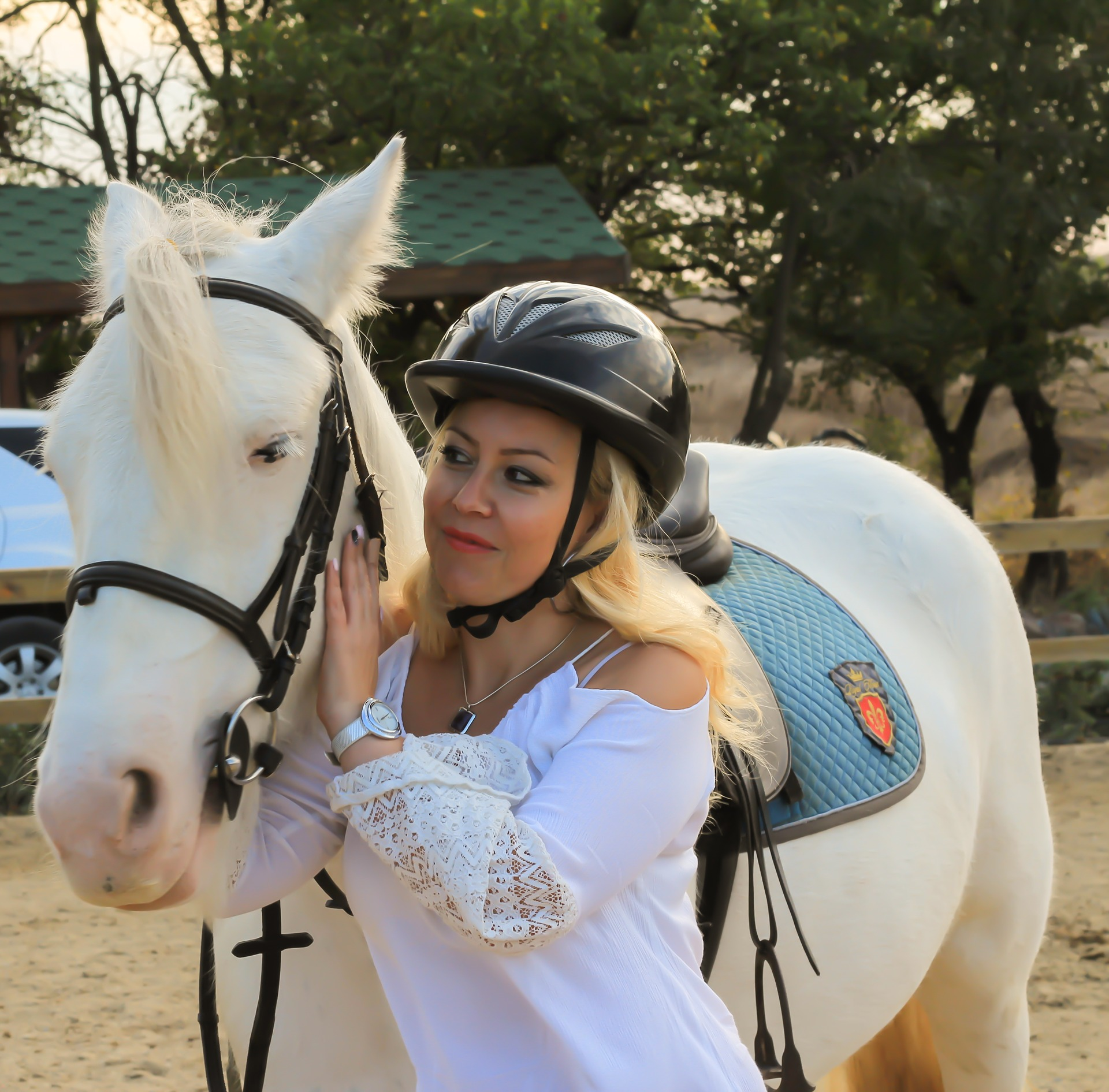 ippoterapia-ability channel-ippoterapia per disabili-ippoterapia corsi-riabilitazione-equitazione per disabili-cavallo uomo-storia ippoterapia-ippoterapia benefici-ippoterapia cos'è-ippoterapia per bambini-ippoterapia e autismo-ippoterapia etimologia-ippoterapia psicologia