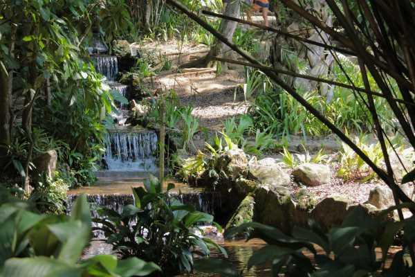 Giardino botanico 02