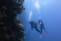 DDI Italy – La subacquea è per tutti!
