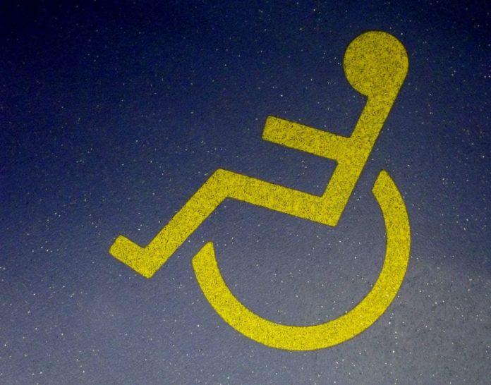 chi è il disability manager