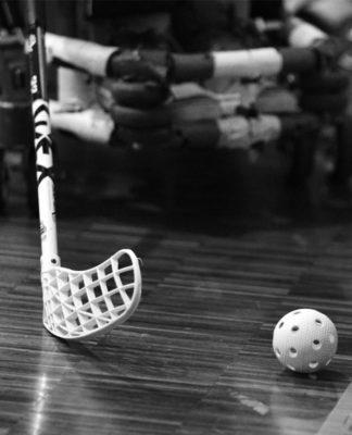 wheelchair hockey bn1