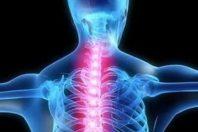 Agire sul midollo spinale per recuperare il linguaggio