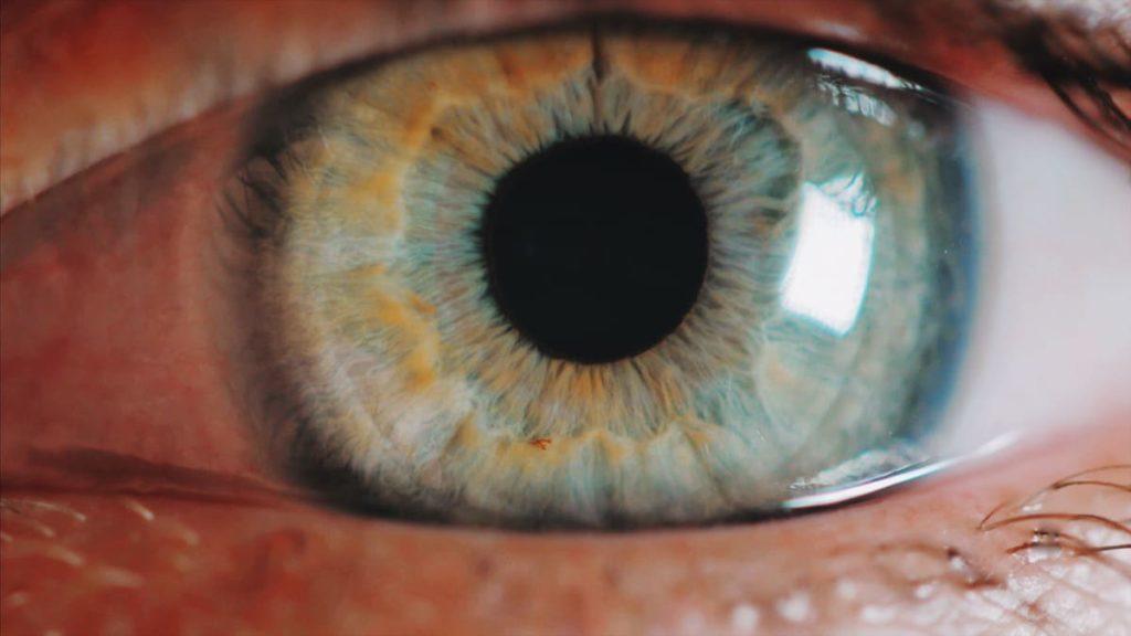 sintomi del distacco della retina