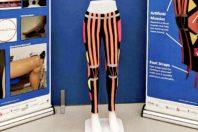 I Right Trousers i pantaloni con i muscoli artificiali per i disabli