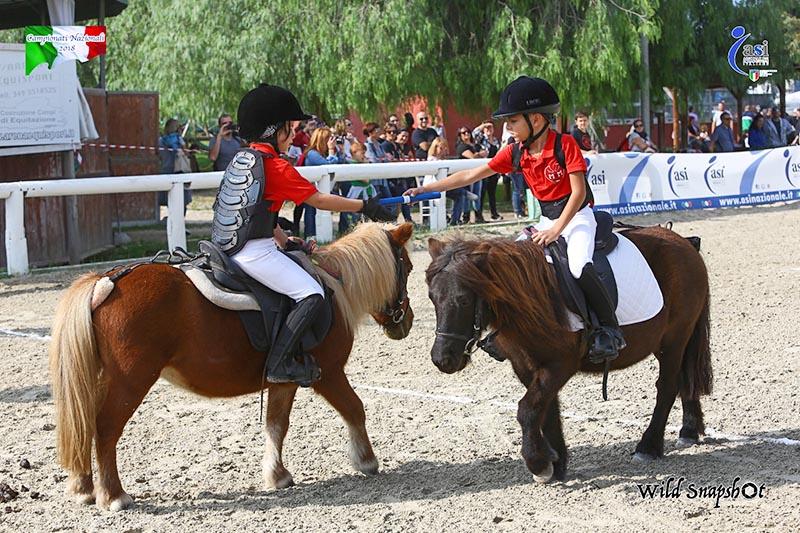 Asi equitazione