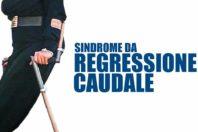 La Regressione Caudale – diagnosi, sintomi e cure