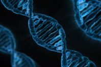 SLA e colesterolo cattivo: c'è correlazione genetica