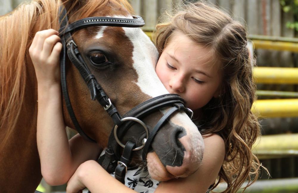 ippoterapia-ability channel-asi nazionale-settore sport equestri asi nazionale-ippoterapia per disabili-ippoterapia corsi-riabilitazione-equitazione per disabili