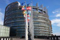 Elezioni europee, un manifesto per la disabilità
