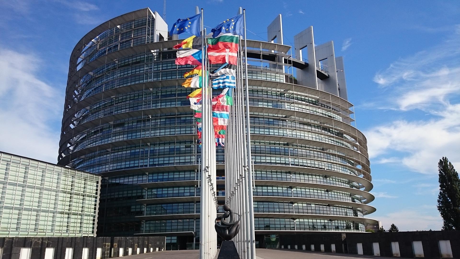 elezioni europee-ability channel-elezioni europee disabilità-elezioni europee 2019-elezioni europee 2019 chi vota
