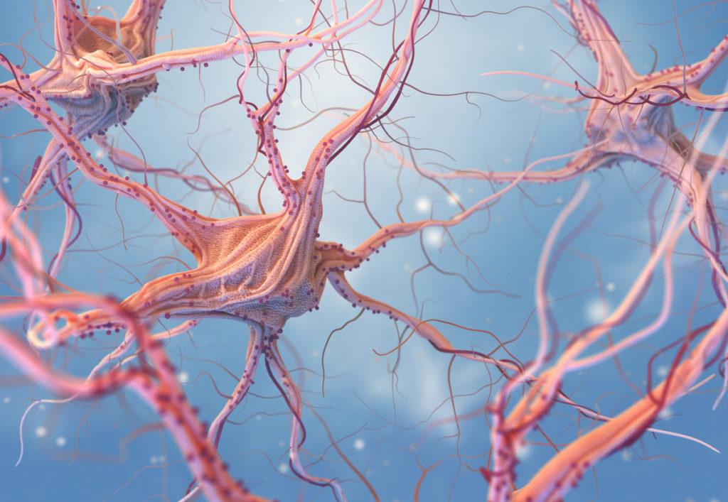 neuroni di epilessia nei bambini
