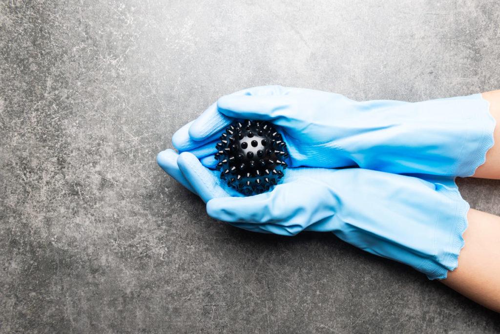palla coronavirus