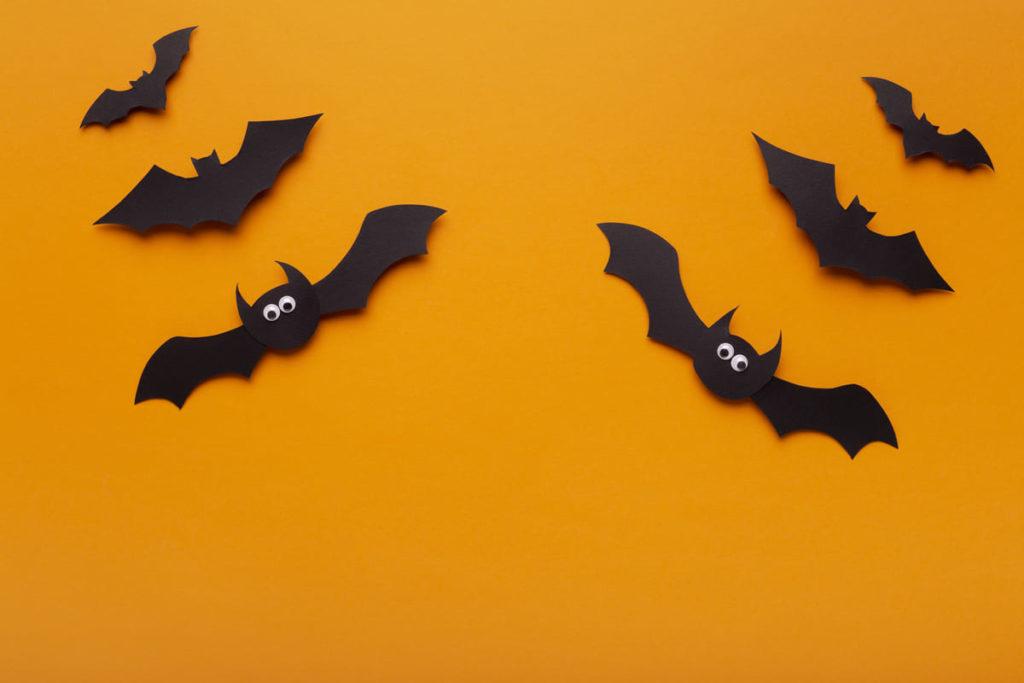 pipistrelli di carta