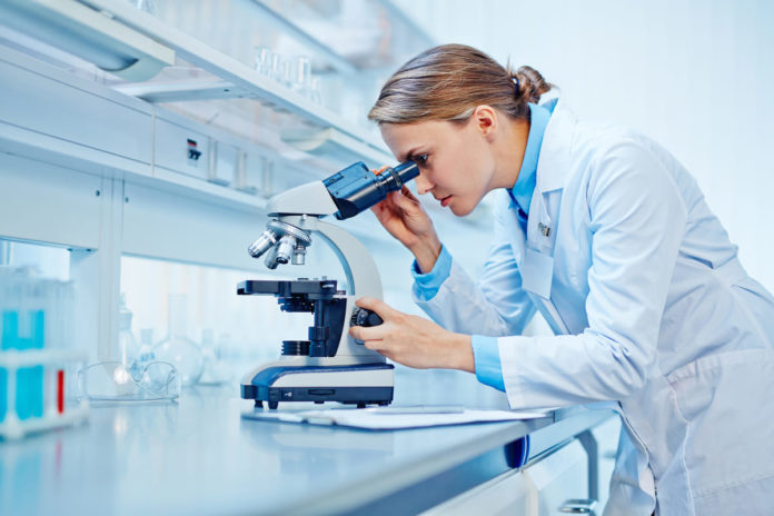 ricercatrice studia nuovo coronavirus