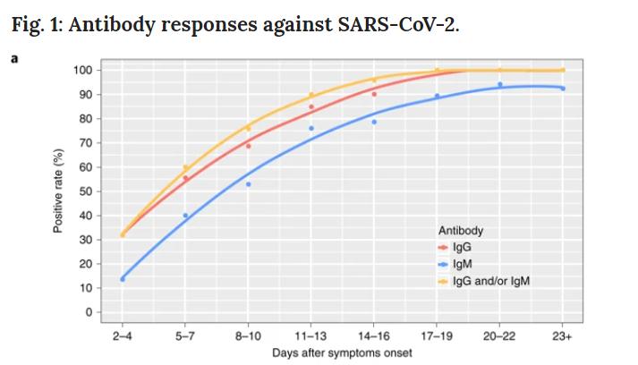 risposte anticorporali sul coronavirus
