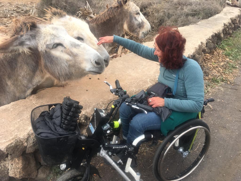 patrizia saccà in compagnia di alcuni asini di Fuerteventura