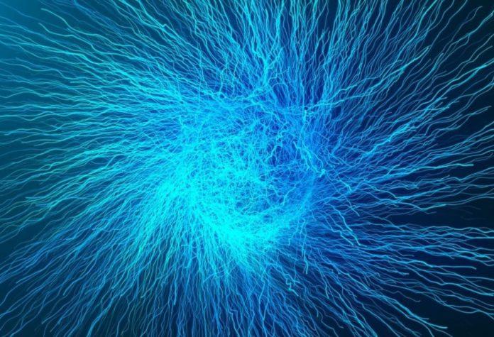 cos'è il motoneurone