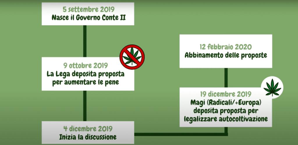cannabis terapeutica a cosa sta lavorando il parlamento italiano