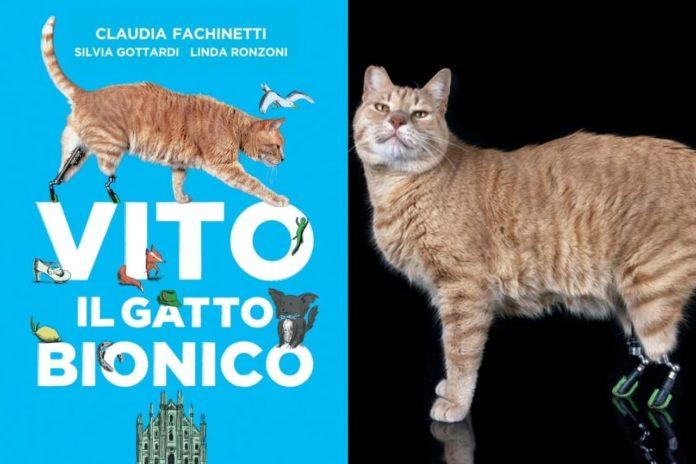 gatti disabili ecco il libro su vito gatto bionico