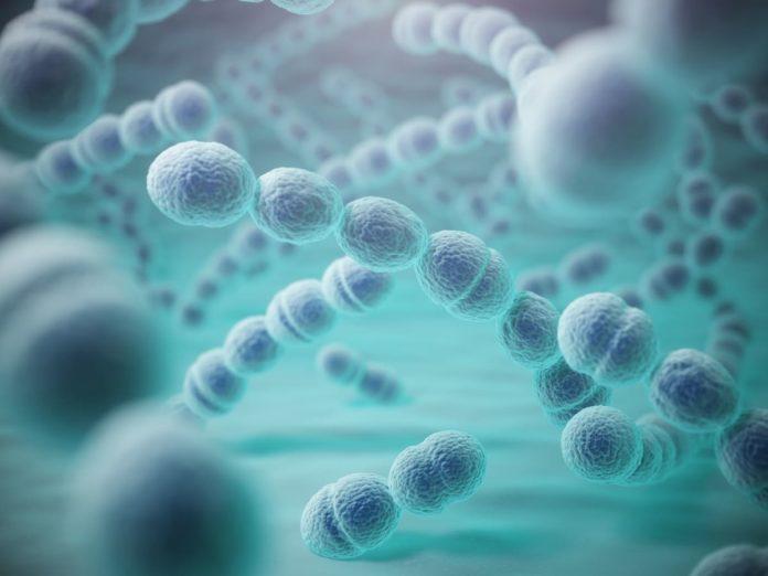 sintomi da pneumococco