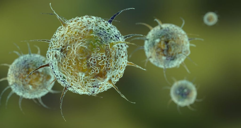 cos'è il virus epstein barr