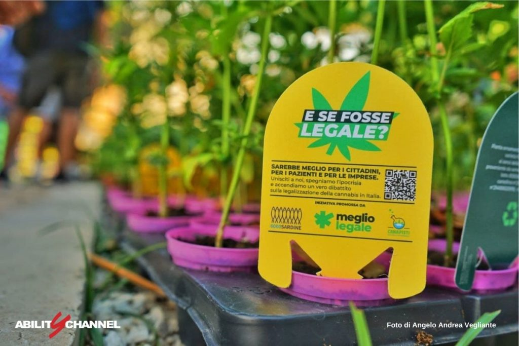 ricerca scientifica cannabis in italia