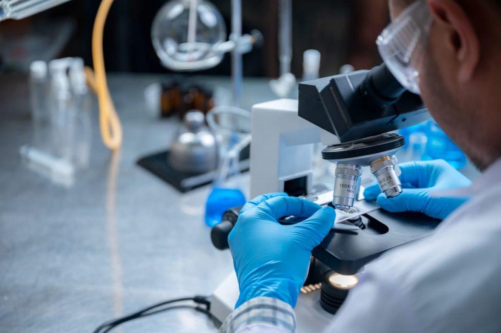 studio cura citomegalovirus